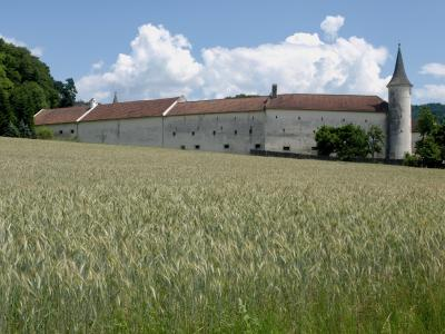 圣莱昂哈德 ·, 房地产, 建设, 强化, 塔, 墙上, 建筑
