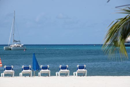 加勒比海, 太阳椅, 海, 假日, 夏季, 旅游, 棕榈树