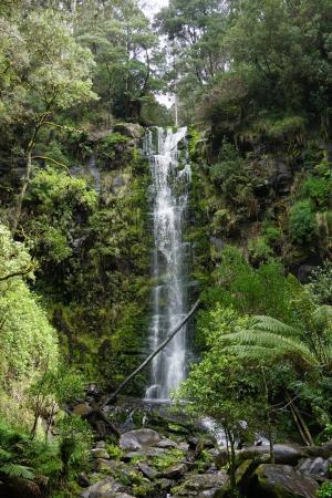 厄斯金瀑布, ottways, 洛恩, 大洋路, 维多利亚, 澳大利亚, 阿波罗湾