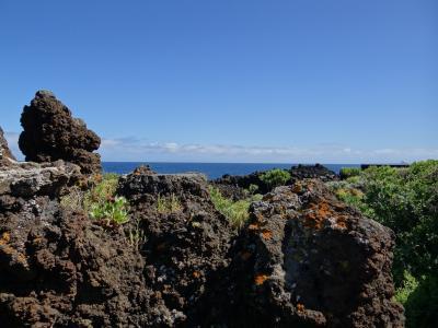 拉帕尔马, 金丝雀岛, 火山岩, 岩石, 海, 景观