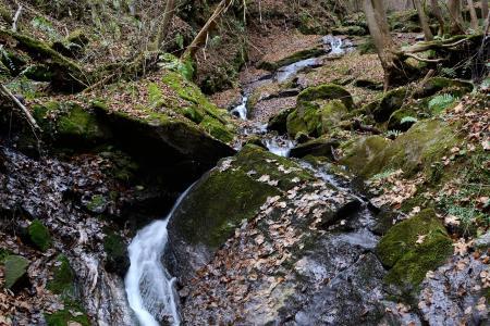 teigitsch, 巴赫, 自然, 施蒂利亚州, 克里克, 瀑布, 流