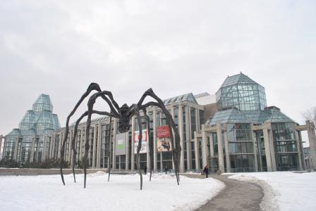 加拿大, 渥太华, 艺术画廊, 建设, 展览, 杰作