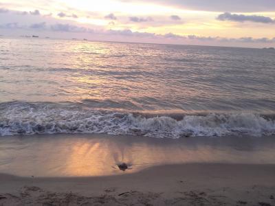 海, 海滩, 波, 海岸, 云彩, 天空, 景观