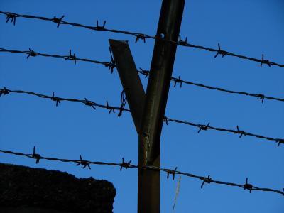 电线, 带刺的铁丝网, 栅栏, 抓到, 指出, 天空, 荆棘