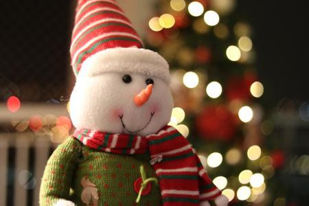 圣诞节, 圣诞装饰品, 圣诞节装饰品, 圣诞快乐, 雪人, 雪, 阀盖