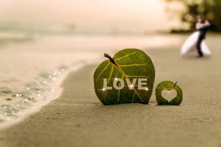 海岸, 叶, 水, 波, 海, 海滩, 沙