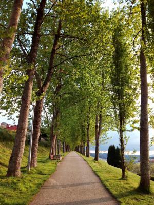 圣地亚哥, 线索, 公园, 加利西亚, 景观, 城市, 天空