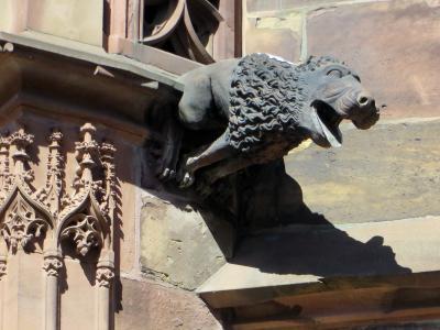 rstrasbourg, 阿尔萨斯, 大教堂, 石像鬼, 建筑, 哥特式, 宗教古迹