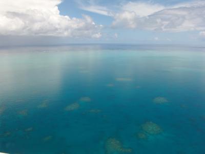 大堡礁, 跳水, 珊瑚, 海洋, 太平洋, 顺利, 反映了
