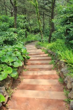 吉尔, 自然, 楼梯, 线索