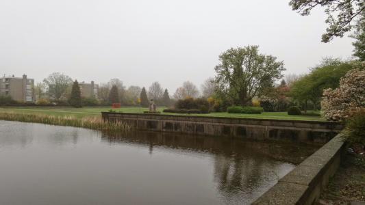 沃尔, 荷兰, 荷兰的小镇, 公园, 湖, 池塘, 绿色
