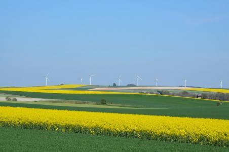 风力涡轮机, 颜色, 蓝色, 平原, 油菜, 农业, 字段