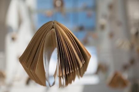 书, 博览会, 组成, 波兰, zeromski, 凯尔采, ciekoty