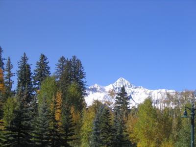 山, 山顶上, 树木, 雪, 现场, 景观, 自然