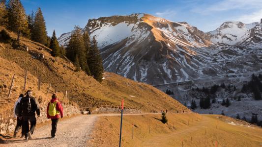 景观, 冬天, 寒冷, 自然, 山脉, 瑞士