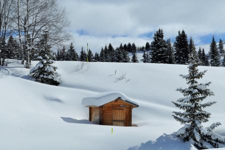 雪, 阿尔卑斯山, 高级上萨瓦省, 冬季景观, 山, 滑雪, 冬天