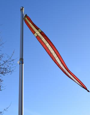丹麦, 丹麦国旗, dannebrog, 旗杆, 丹麦语, 典型的丹麦, 挥舞旗帜