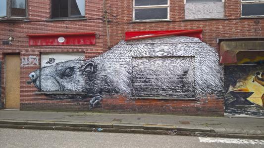 涂鸦, doel, 比利时