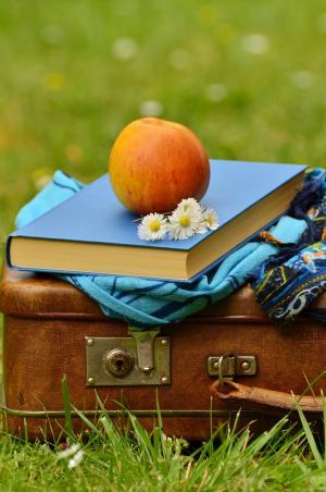 苹果, 书, 休息, 颜色, 黛西, 秋天, 花