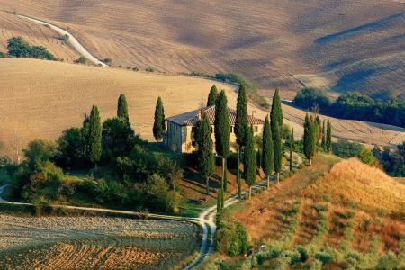 托斯卡纳, 景观, 柏树, 农村现场, 小山, 意大利, 自然
