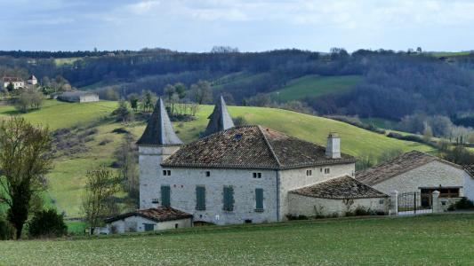 景观, 房屋, 别墅, 法国, 南西部, 屋面, 字段