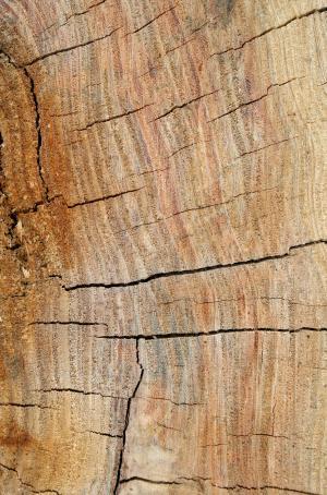 木材, 粮食, 纹理, 小组, 木材, 背景, 槽
