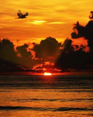 日落, 海, 云彩, 海洋, 水, 太阳, 天空