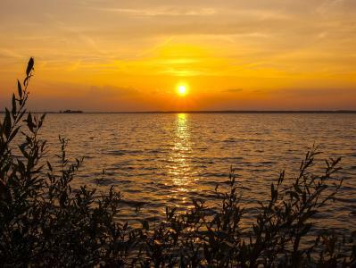 steinhuder 海, 海, 景观, 日落, 自然, 黄昏, 夏季
