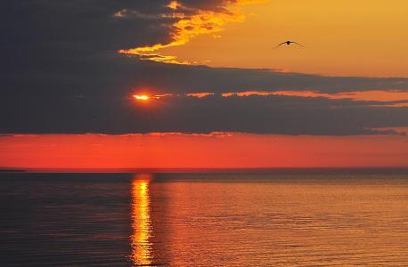 日落, 云彩, 天空, 落日的天空, 橙色, 太阳, 云计算