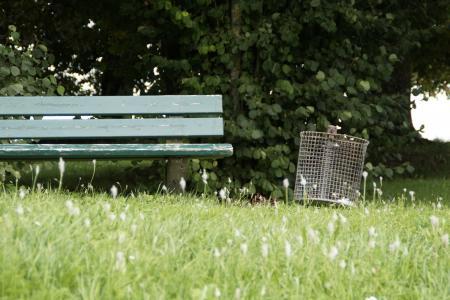 公园的长椅上, 银行, 宁静基地, 步行, 去散步, 坐, 休息