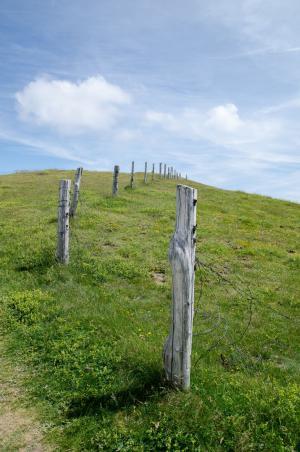 普拉托, 栅栏, 天空, 绿色, 蓝色, 景观