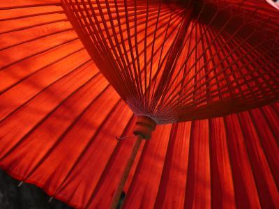 日本, 雨伞, 茶, k, bangasa 白, 文化, 亚洲
