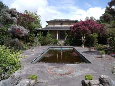 茶馆, 花园, 植物园, 公园, 爱尔兰