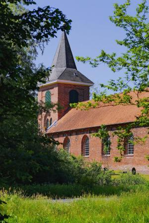 教会, 景观, 田园, 初夏, 绿色, 树木