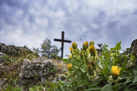 徒步旅行, 蒲公英, 岩石, 十字架, 首脑会议, 跨峰会, 自然