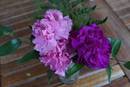丁香, 花, 斯特劳斯, 紫色, 粉色