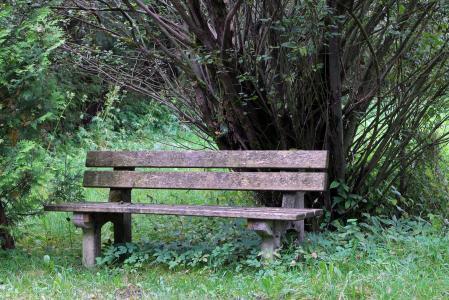 板凳, 银行, 座位, 自然, 出, 坐, 单击