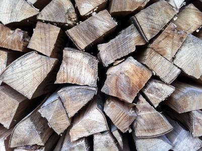 木材, 日志, 木头堆, 自然, 森林, 杯, 锯材