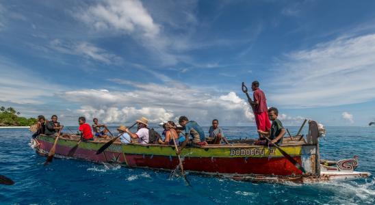 桨, 独木舟, 旅行, 赛艇, 海洋, 活动, 蓝色