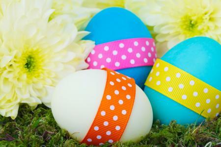 庆祝活动, 大丽花, 花, 颜色, 多彩, 花, 装饰
