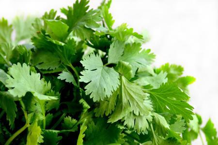 香菜, 草药, 食品, 绿色, 美食, 一道菜, 欧芹
