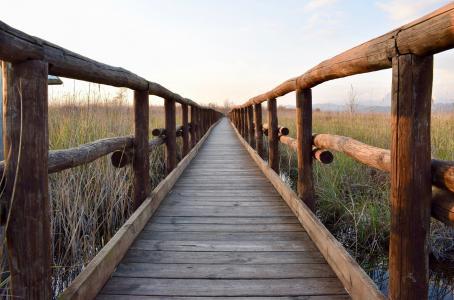 木制人行桥, 行人天桥, 这座木桥, 庞迪莱尼奥, 桥梁, 自然, 线索