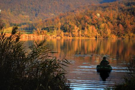 湖, 水, 秋天, 水百合, 天空水, 自然, 景观
