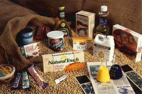 大豆, 食品, 使用, 健康, 豆, 绿色, 大豆