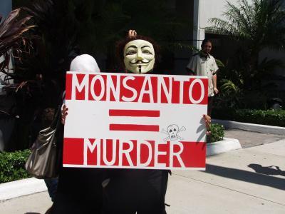 抗议, 愤怒, 转基因生物, anomim, 面具