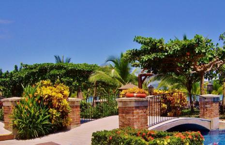 哥斯达黎加, 洛杉矶修万豪酒店, 公园, 自然, 建筑, 中美洲, 植物区系
