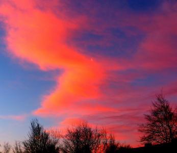 日出, morgenrot, 天空, 月亮, 新月, 树木, 自然