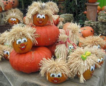 南瓜, 葫芦, 收获, 感恩节, 多彩, 红色, 棕色