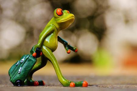 青蛙, 告别, 旅行, 行李, 手提袋, 走开, 假日