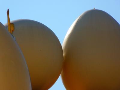 鸡蛋, 球, 图, 博物馆, 菲格拉斯, 大理, 西班牙